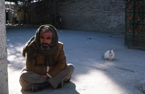 Man and cat, Quetta